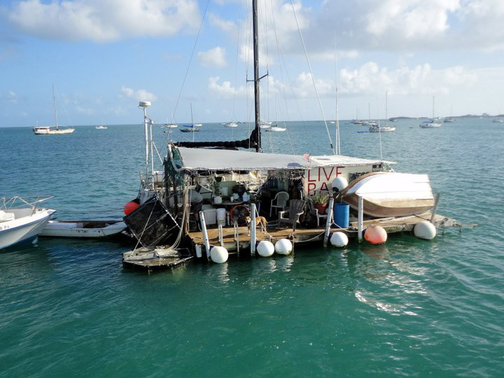 Cowboy cowgirl fishing charters key west florida for Key west fishing boats